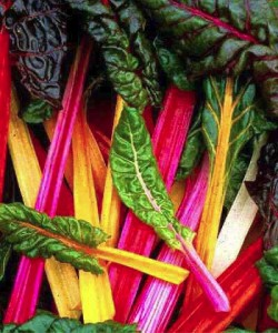 Eating nutrient dense foods like swiss chard, a green leafy vegetable, is Where Easy Living Begins